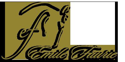 Emile Faurie | Dressage Logo